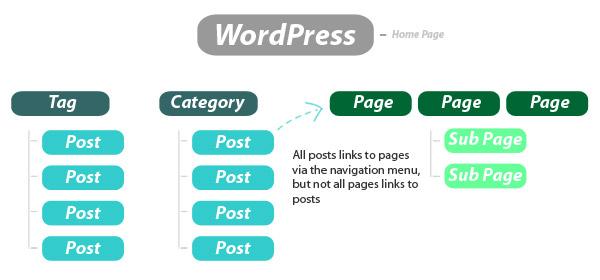 записи и страницы wordpress