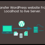 transfer WP site from localhost