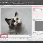 Как оптимизировать изображение с помощью Photoshop